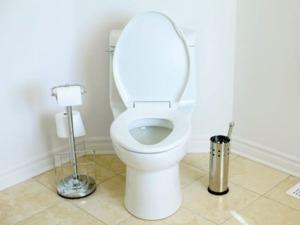 سرویس و باز کردن توالت فرنگی